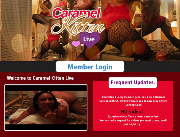 Caramel Kitten Live Free Video