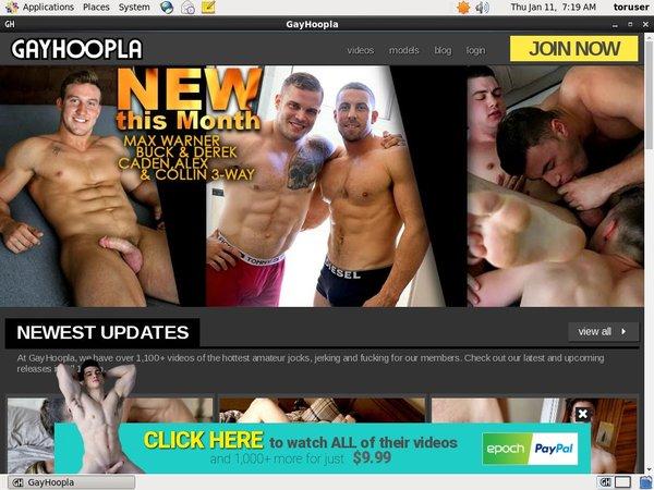 Get Free Gayhoopla Logins