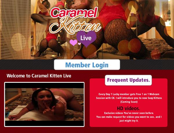 Caramel Kitten Live Login Info